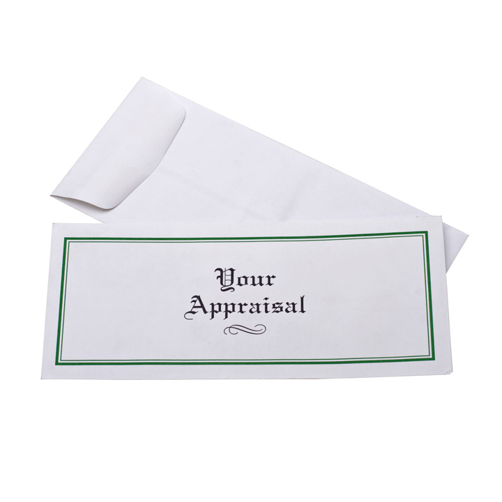APPRAISAL ENVELOPE-BX/HD