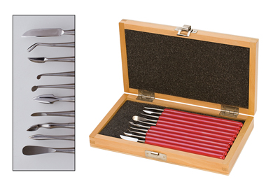 DELUXE 10 PC. CARVER SET w/ box