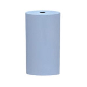SILICONE POLISHERS UNMOUNTED - FINE (LIGHT BLUE) LARGE CYLINDER, PK/12